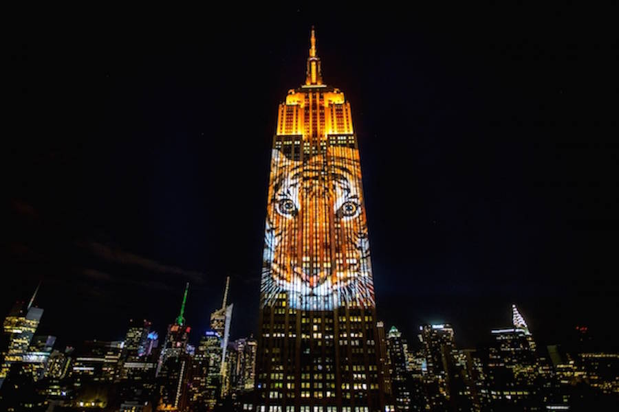 Projecting Change at the Empire State Building