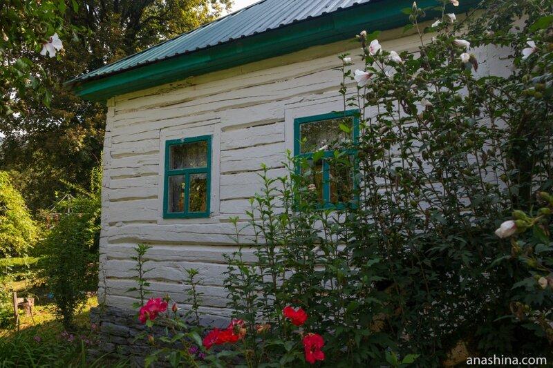 Домик Кошмана, Солохаул, краснодарский чай, Сочи