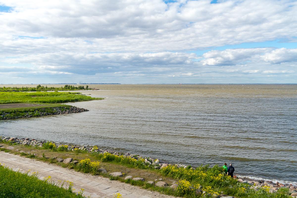 побережье финского залива фото 9