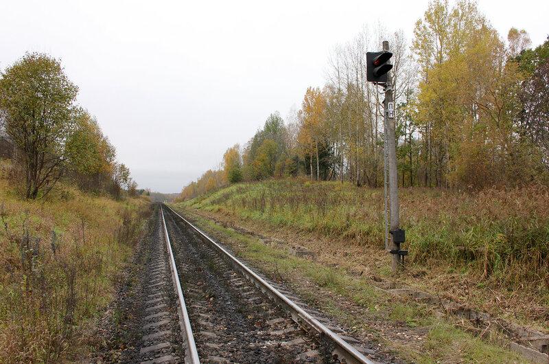Светофор ПН перед станцией Гарнея, перегон Себеж - Гарнея