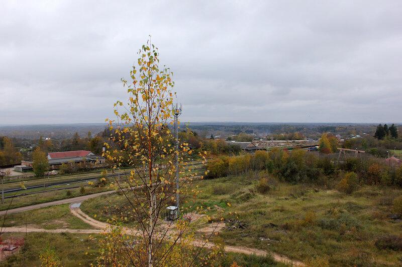 Берёза и западная горловина станции Себеж, вид на Латвию