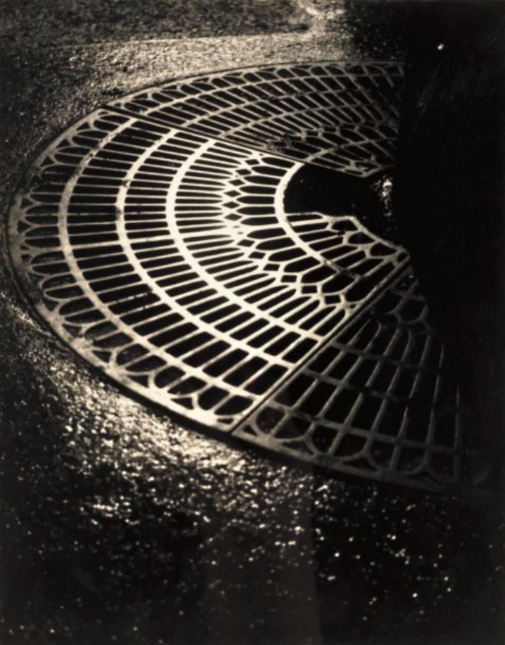 1932. Канализационная решетка возле больших деревьев в городе