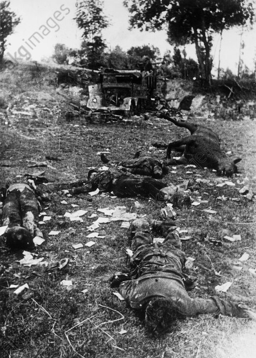 Kдmpfe bei Brody, Juli 1944/Gefallene... - Battle for Brody, July 1944 / Photo -
