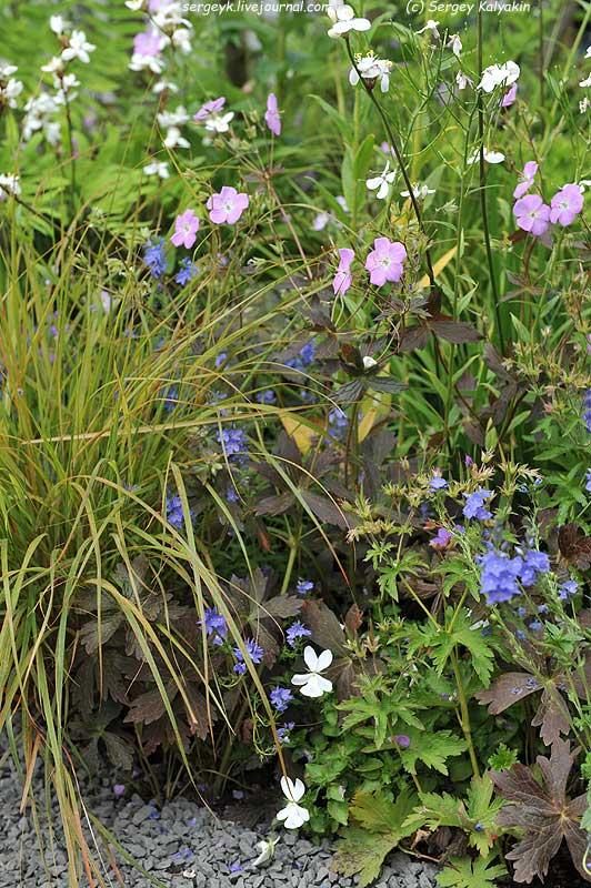 The RHS Greening Grey Britain Garden (57).jpg