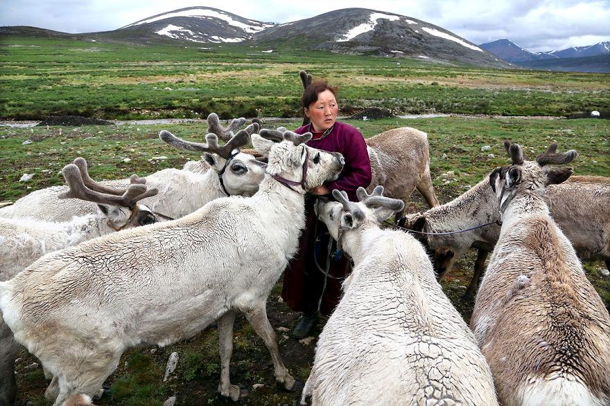 Кочевники цаатаны, Монголия.
