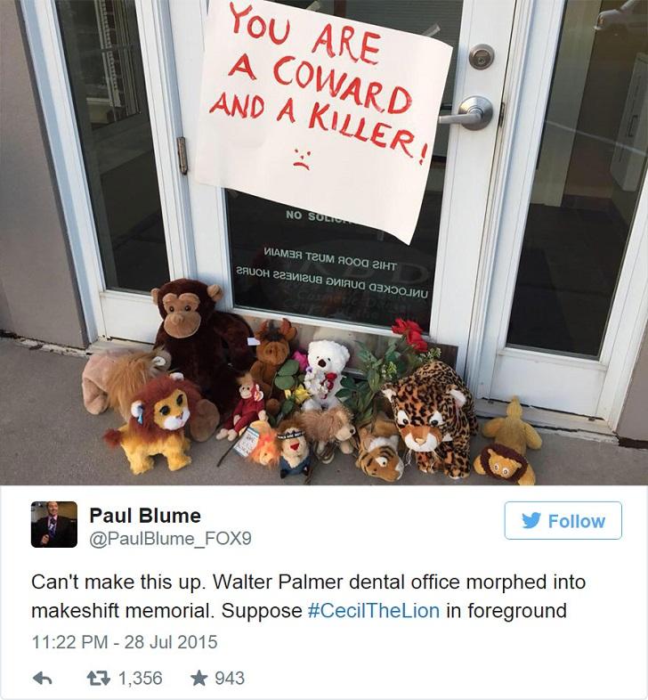 Местные жители принесли к месту работы Палмера цветы и игрушки в память о погибшем животном. Надпись