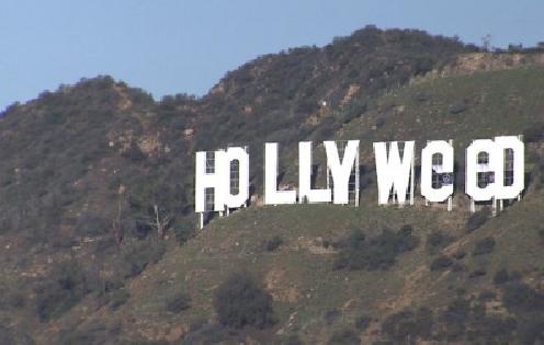 ВЛос-Анджелесе неизвестный испортил популярный знак Hollywood