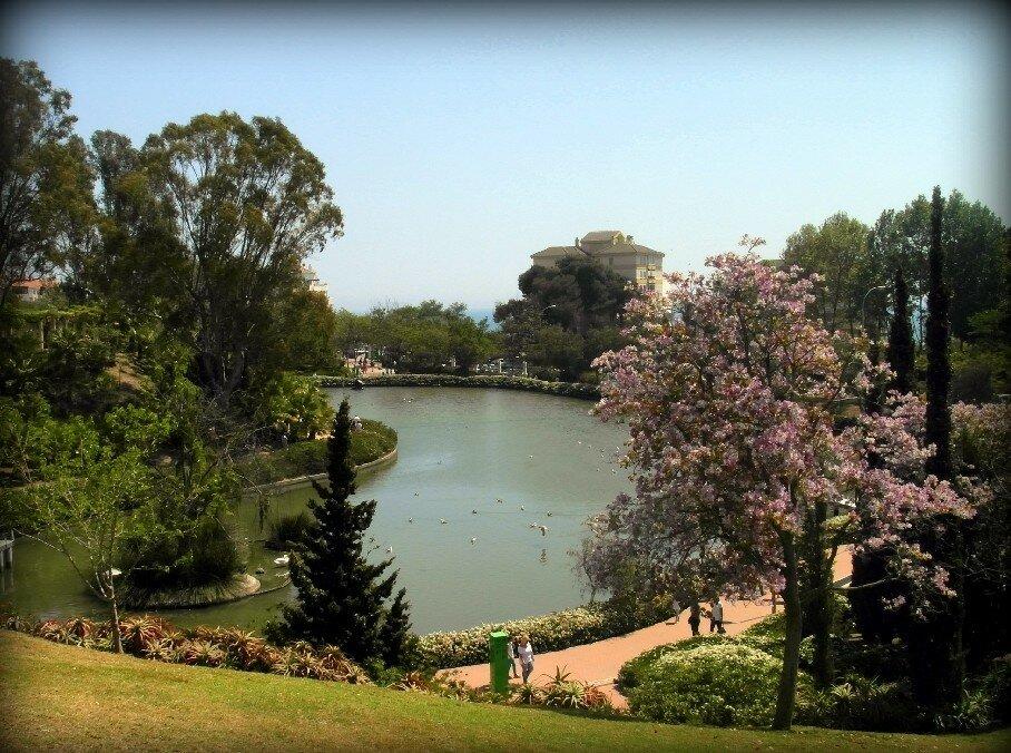 Paloma Park.jpg