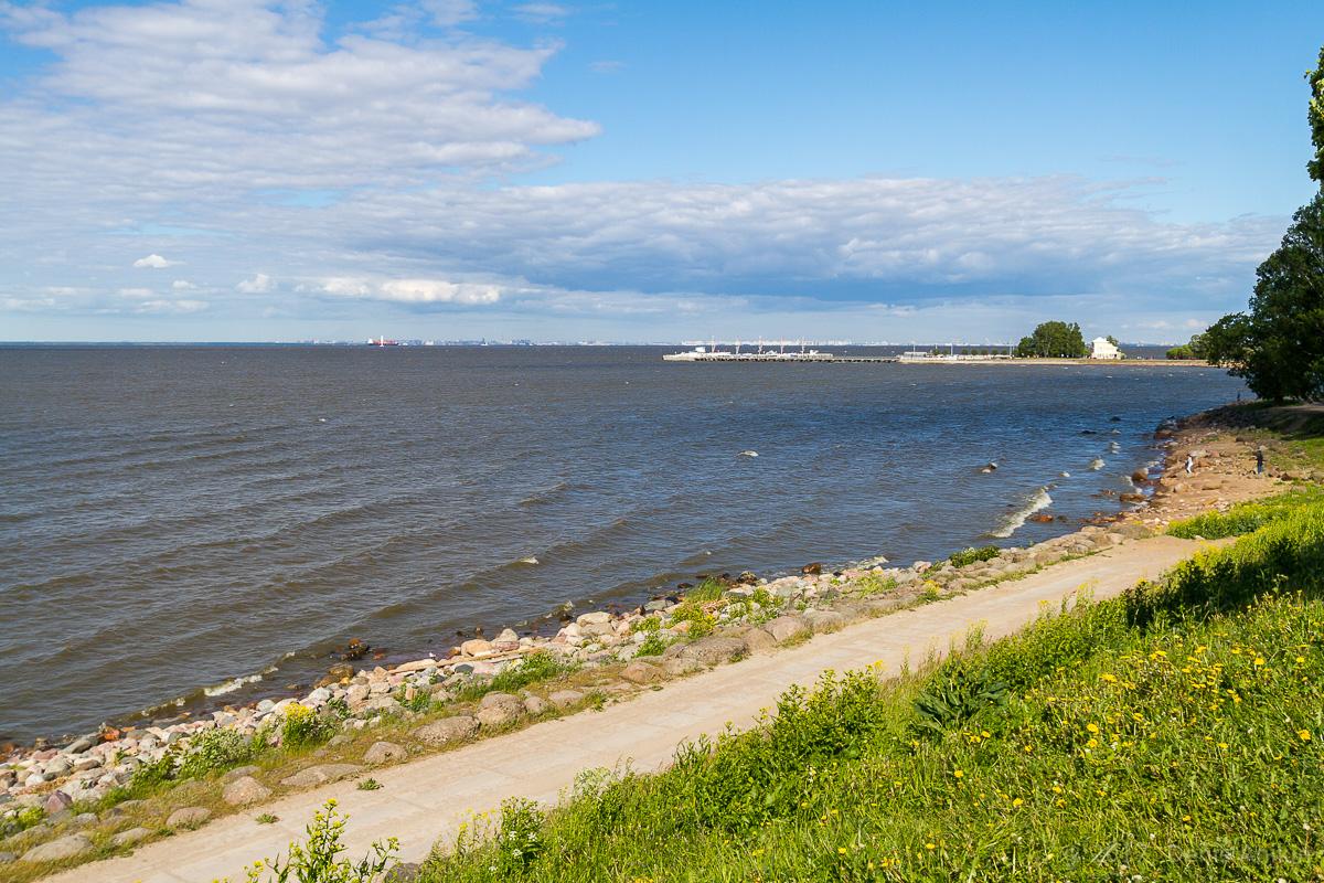 побережье финского залива фото 10
