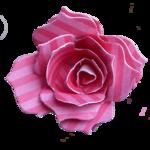 Melaniesthings-bloem.png