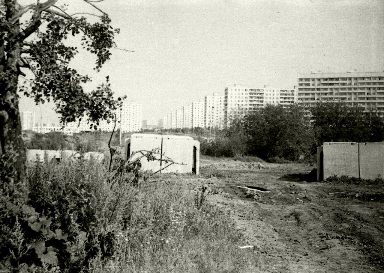 1979. Вид из садов от Покровских выселок на 3-й Дорожный проезд