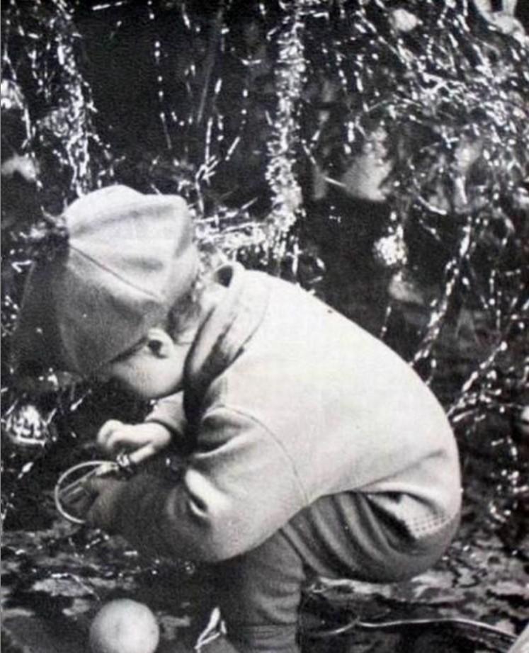 1960. Под елочкой. Гусев. Калининградская область