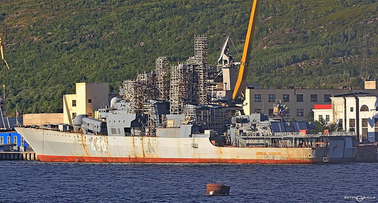 Западный взгляд на перспективы российского океанского флота