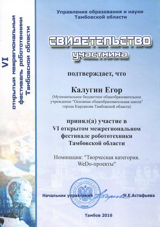 VI открытый межрегиональный Фестиваль робототехники Тамбовской области (10.12.2016 год)