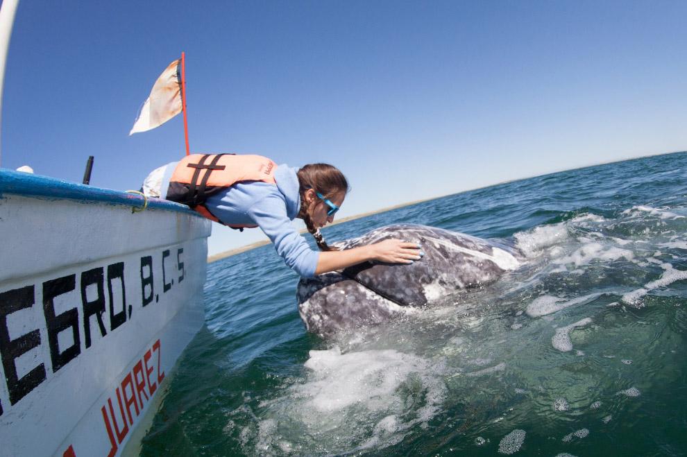 8. Чтобы сделать снимки под водой, он использует обычную зеркальную камеру, упакованную в подво