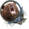 Симушкин медведь