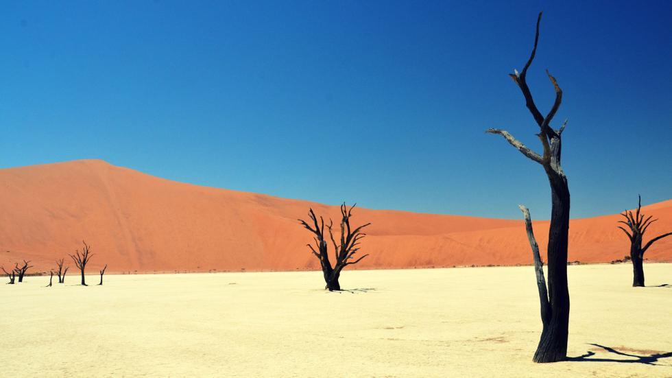 Mummified Trees / Texasranger92 / Namib-Naukluft National Park in Namibia, Deadvlei (or 'Dead