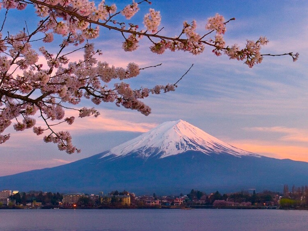 Japanese Hanami in Pictures