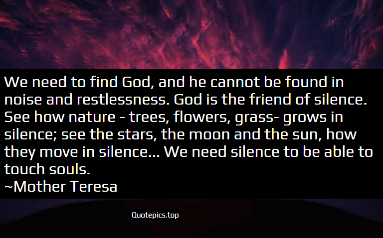 We need to find God, and he cannot be found in noise and restlessness. God is the friend of silence. See how nature - trees, flowers, grass- grows in silence; see the stars, the moon and the sun, how they move in silence... We need silence to be able to touch souls. ~Mother Teresa