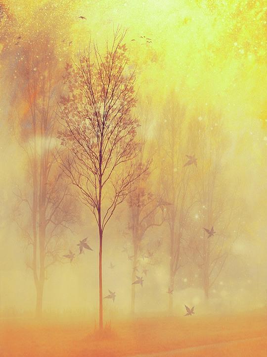 Inspiring Art by Gamze Guckiran