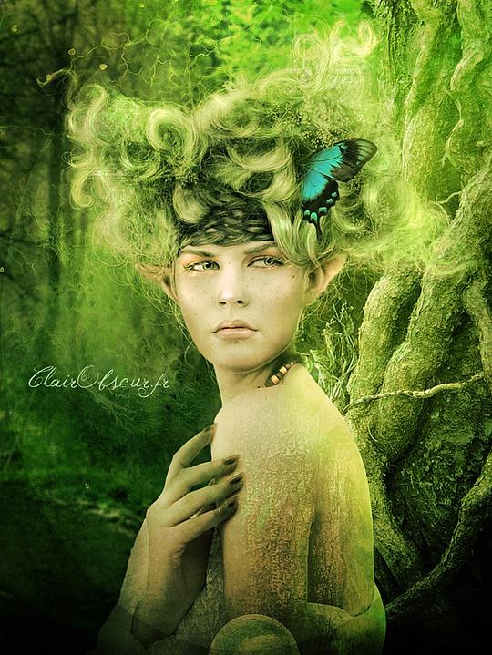 Photo Manipulations by Stephanie Pitino