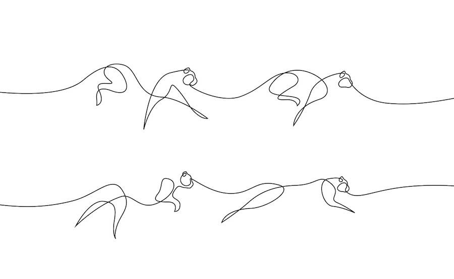 New Series of Animals in One Line by Differantly (14 pics)