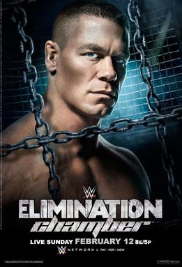 Post image of WWE Elimination Chamber 2017