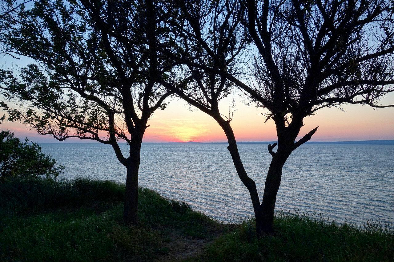берег, Таманский залив, у п. Сенной