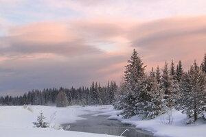 Зимние  утренние зарисовки ...
