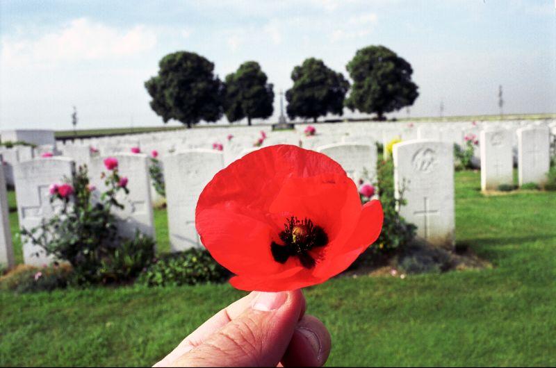 23. На Мемориальном кладбище в Аррасе, Франция.