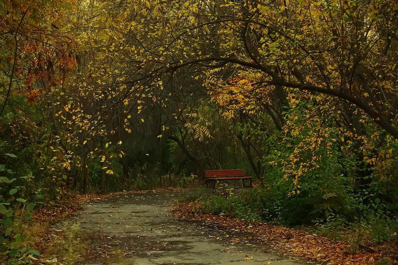 Ташкентский ноябрь
