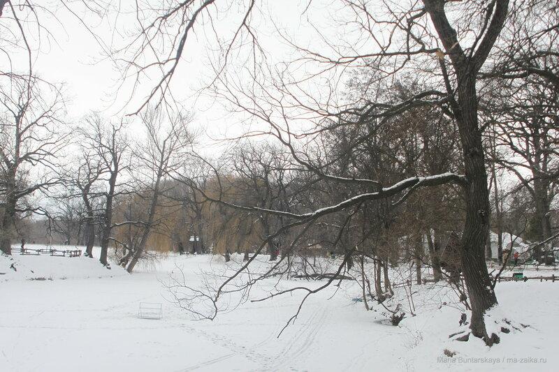 Городской парк, Саратов, 02 января 2017 года