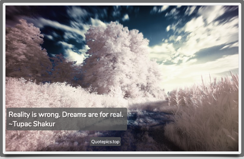 Reality is wrong. Dreams are for real. ~Tupac Shakur