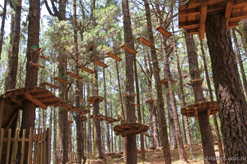 Forestal Park на Тенерифе