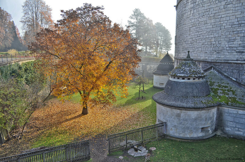 Осень в замке Мунот