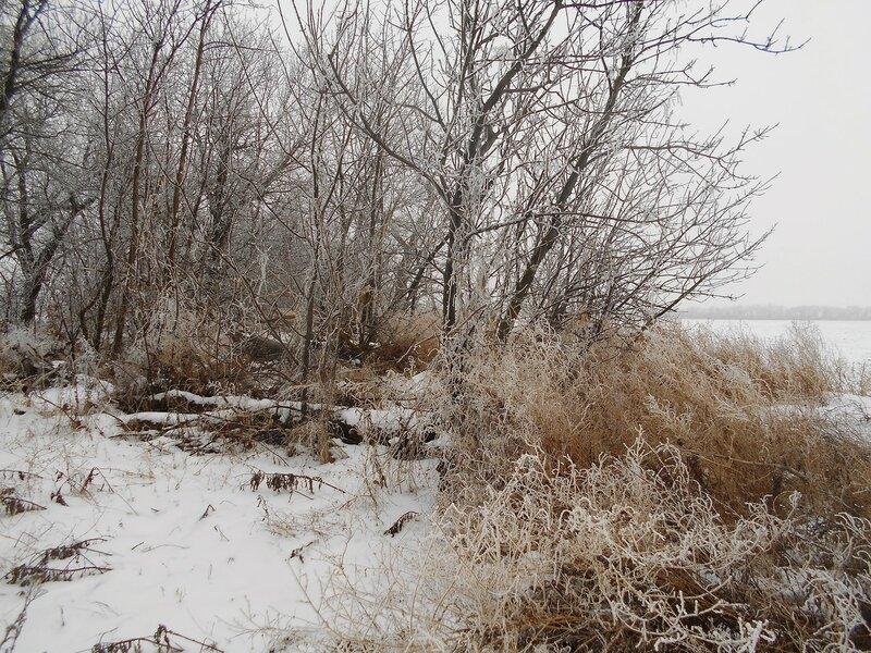 Снежные окрестности ... В походе декабрьском, снежно-туманном,