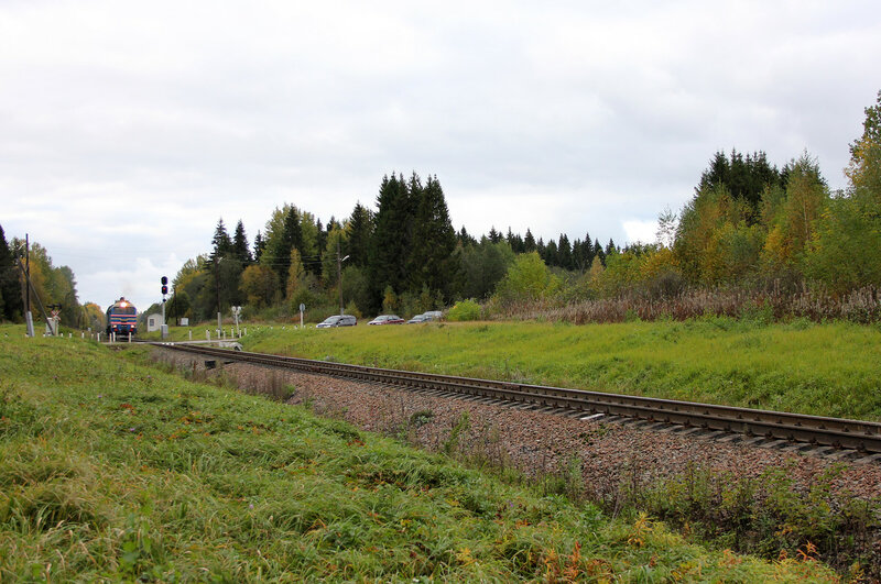 ДМ62-1796 с пригородным поездом 6983, Весьегонск — Сонково на перегоне Остолопово - Красный холм