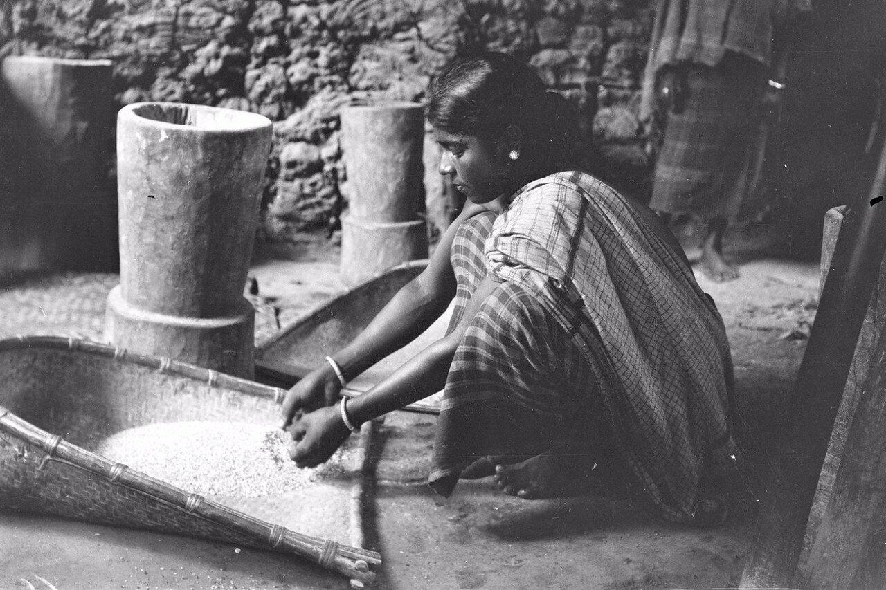 67. Девушка чистит рис. Моландени