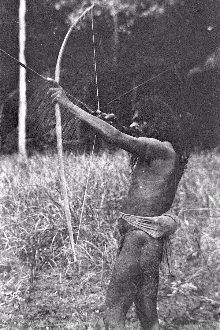 80. Человек народности ведда стреляет из лука