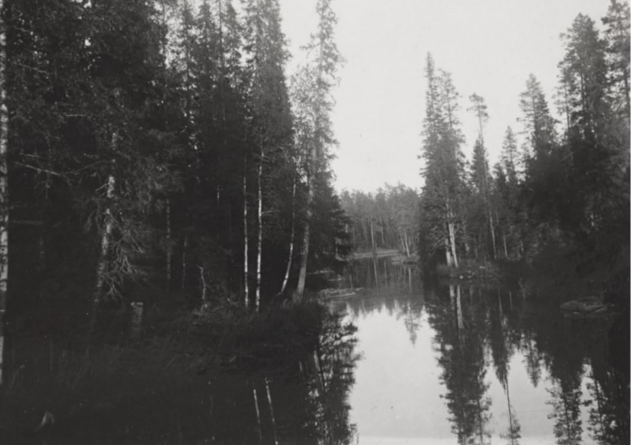 Суйстамо. Река