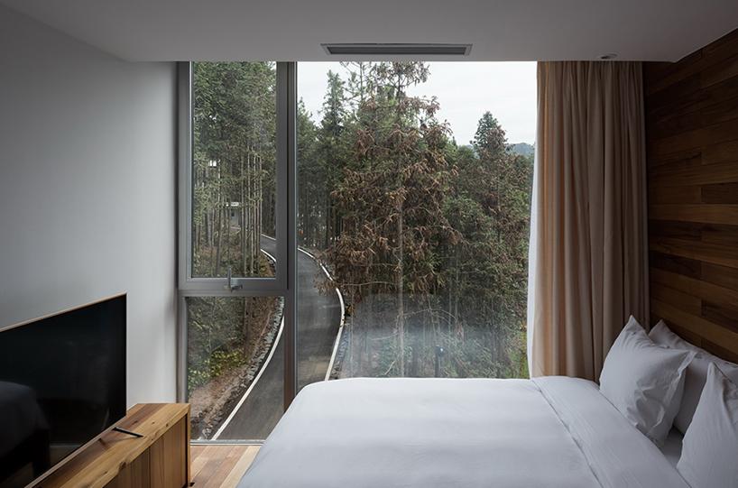 Мини-отель в виде дерева в Китае