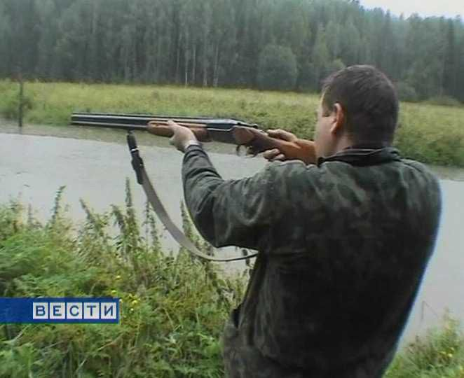 ВВоронежской области возросла численность оленей икосуль