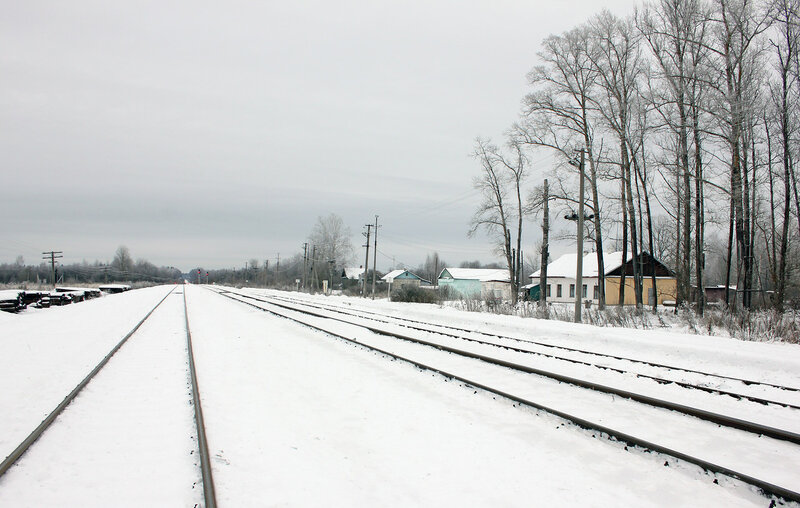 Станция Осуга, вид на Ржев