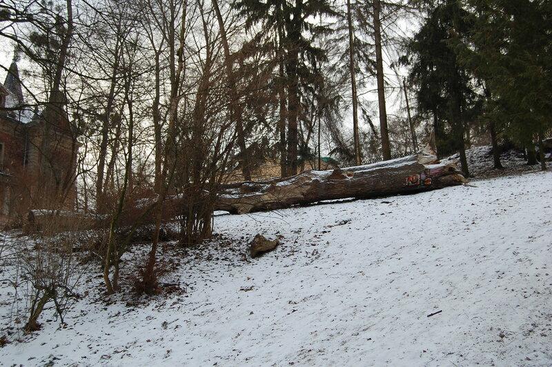 Стрыйский парк, 3 января 2017-го