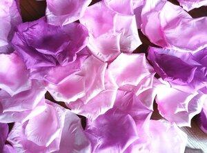 Роза - царица цветов 3 - Страница 16 0_13e33f_e5a32b4a_M