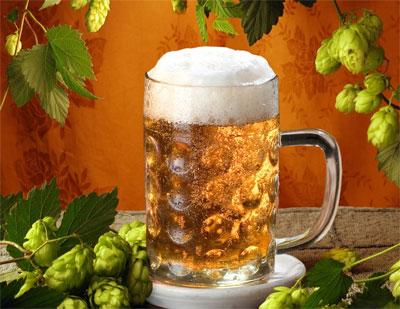 С днем пивовара! Кружка пива на фоне хмеля