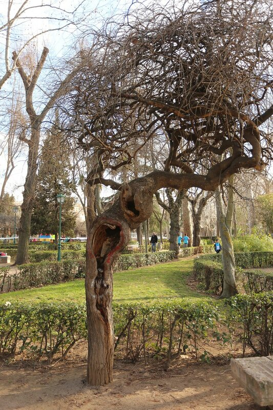 Parque de La Vega, Toledo