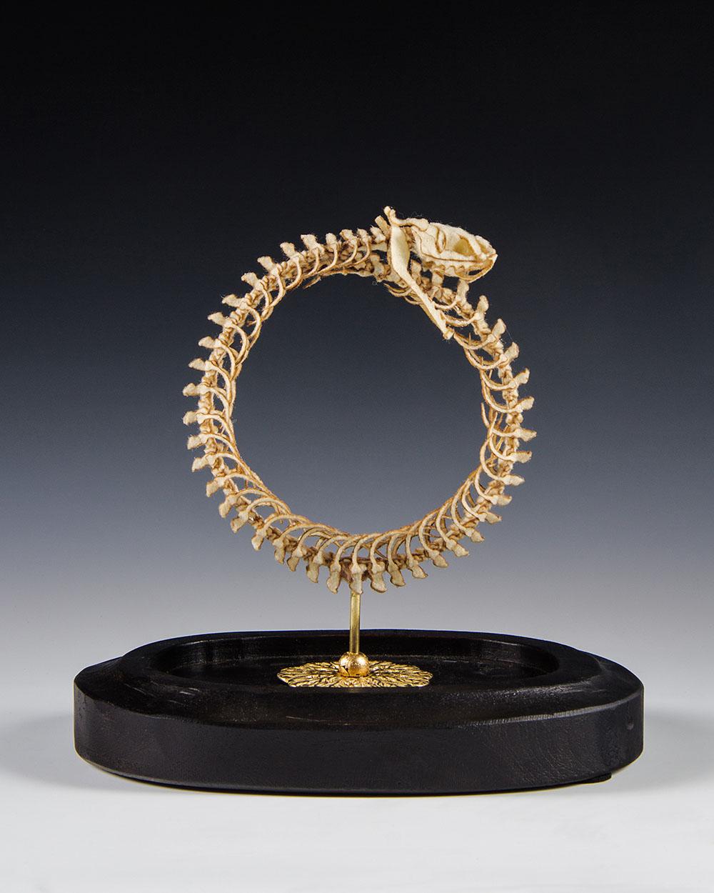 Анатомические скульптуры из шерсти (10 фото)