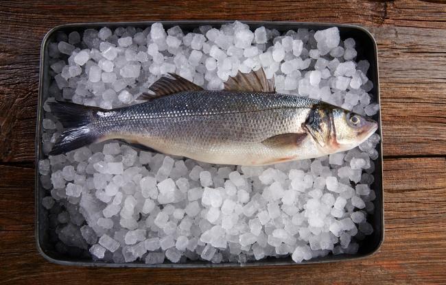 © Depositphotos  Важное условие— правильная обработка после улова. Рыбу неследует живой тран