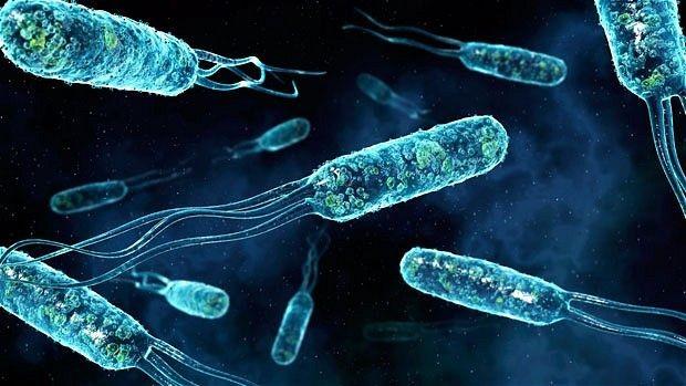 Учёные узнали, почему туберкулёз неуничтожил людей